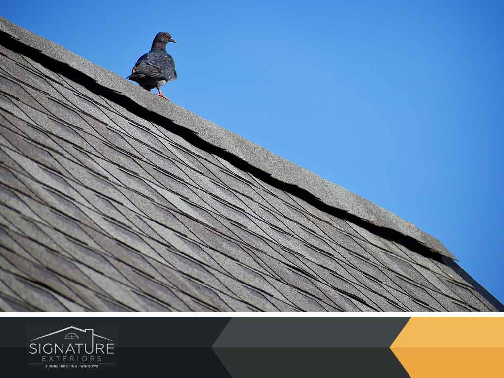 3 Ways to Keep the Roof in Good Condition