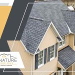 How Do Roof Leaks Affect Your Comfort and Home's Efficiency?